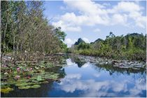 Suối Yến - điểm đến cho du khách thích săn ảnh mùa thu