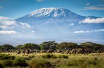 Tanzania - điểm đến hấp dẫn tại châu Phi