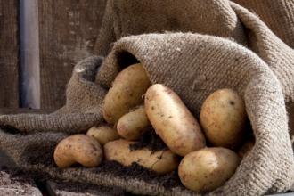 Vì sao khoai tây phải để trong bóng tối
